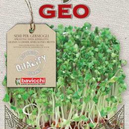 BIO Brokoli za kaljenje 13g