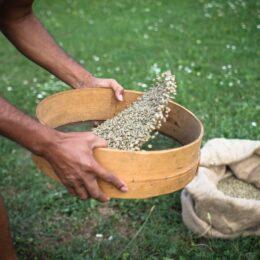 Kava Aromatizirana med in lešnik 100g